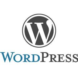 全くの初心者がWordPressでブログを始める方法
